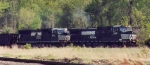 NS 539
